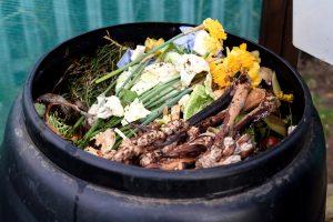Kompostieren – ein natürlicher Vorgang zu unserem Nutzen