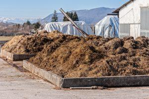 Pferdemist kompostieren